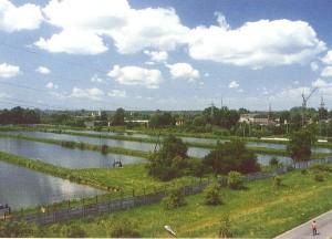 Osadniki wody przemysłowej
